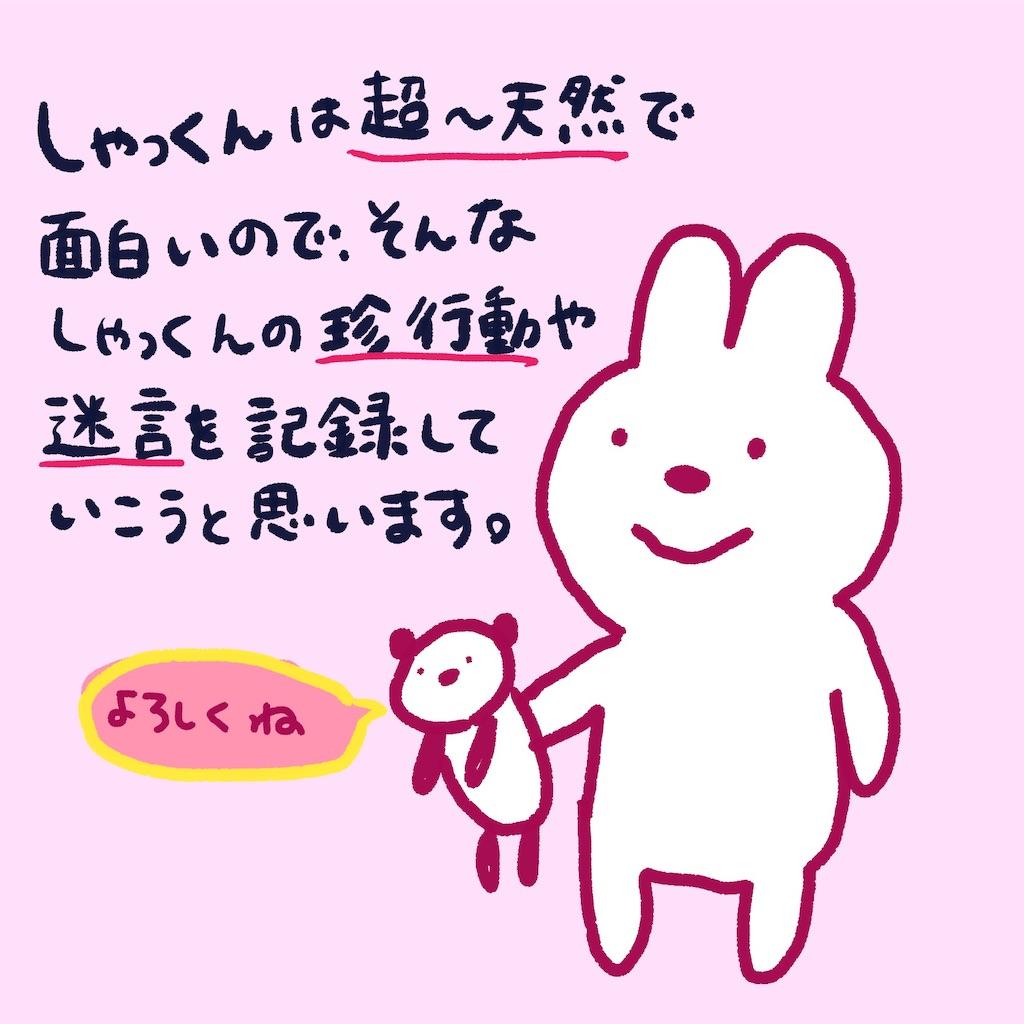 f:id:colo_shaku:20190216140611j:image