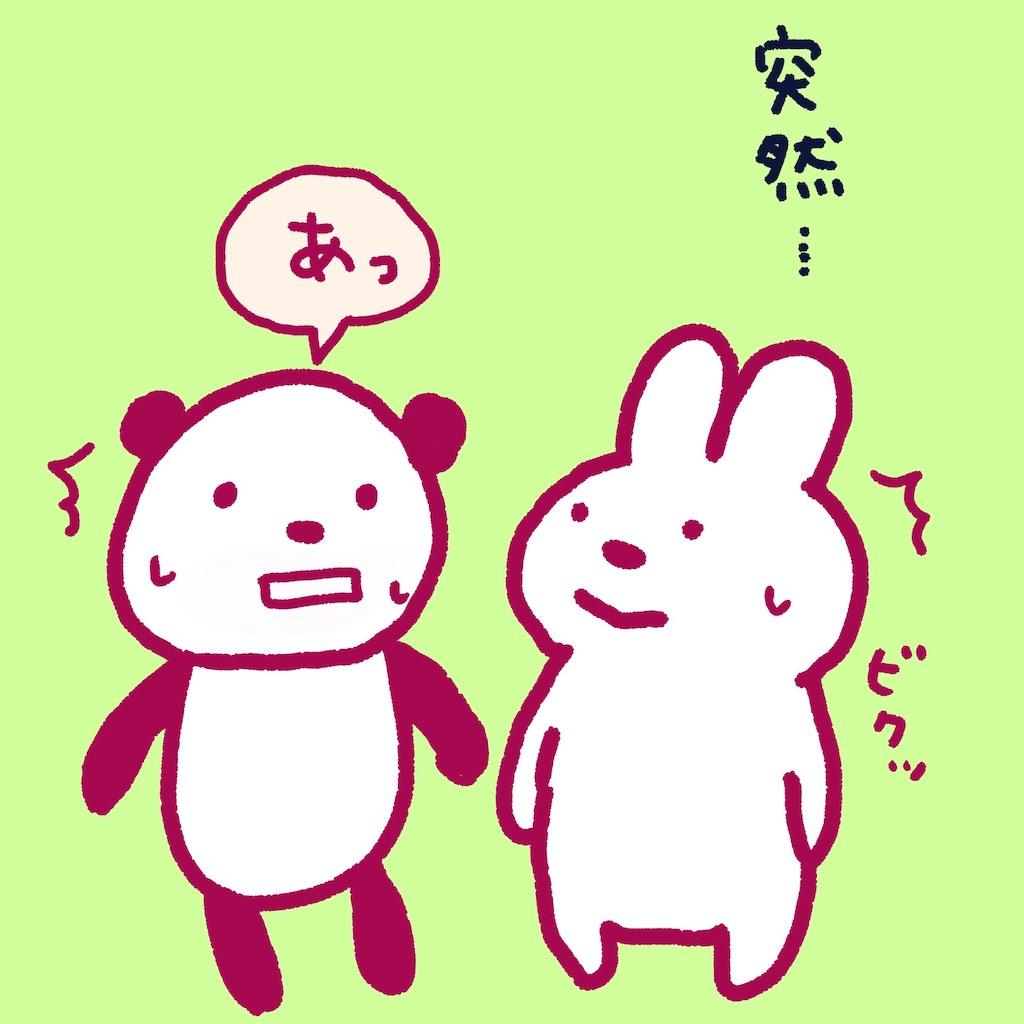 f:id:colo_shaku:20190216161131j:image