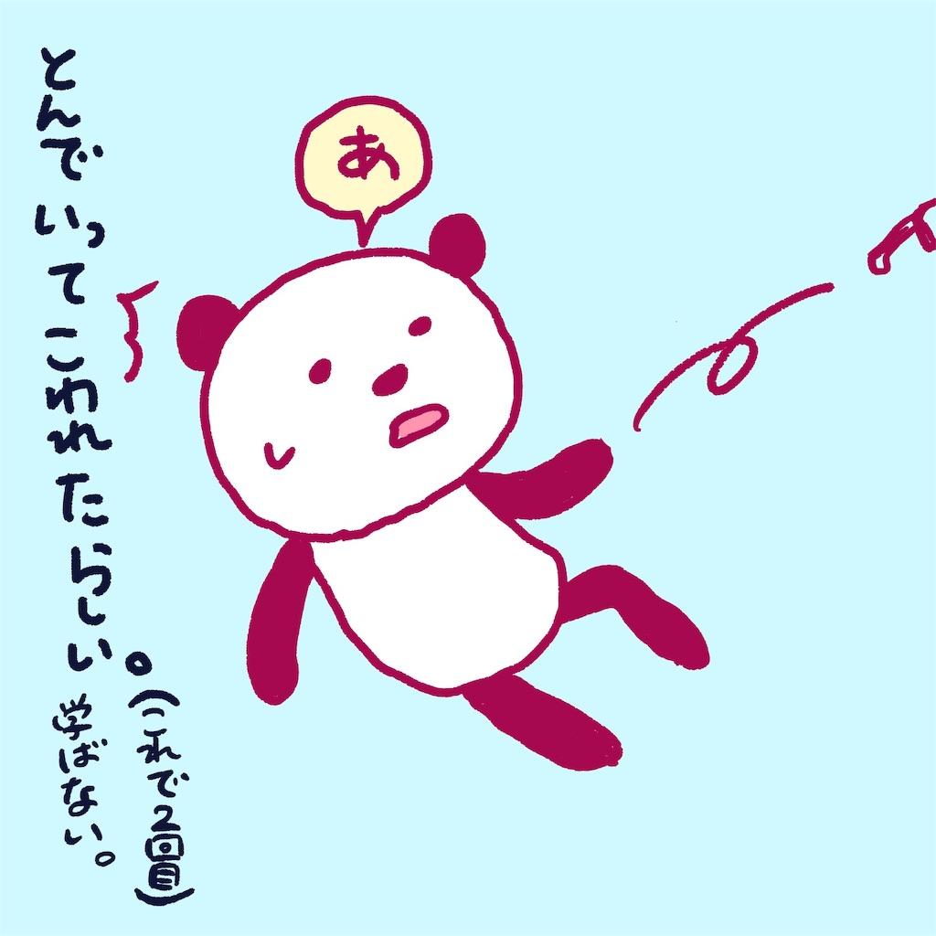 f:id:colo_shaku:20190216182148j:image