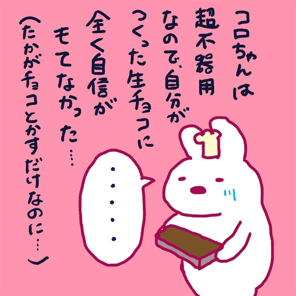 f:id:colo_shaku:20190217210603j:image