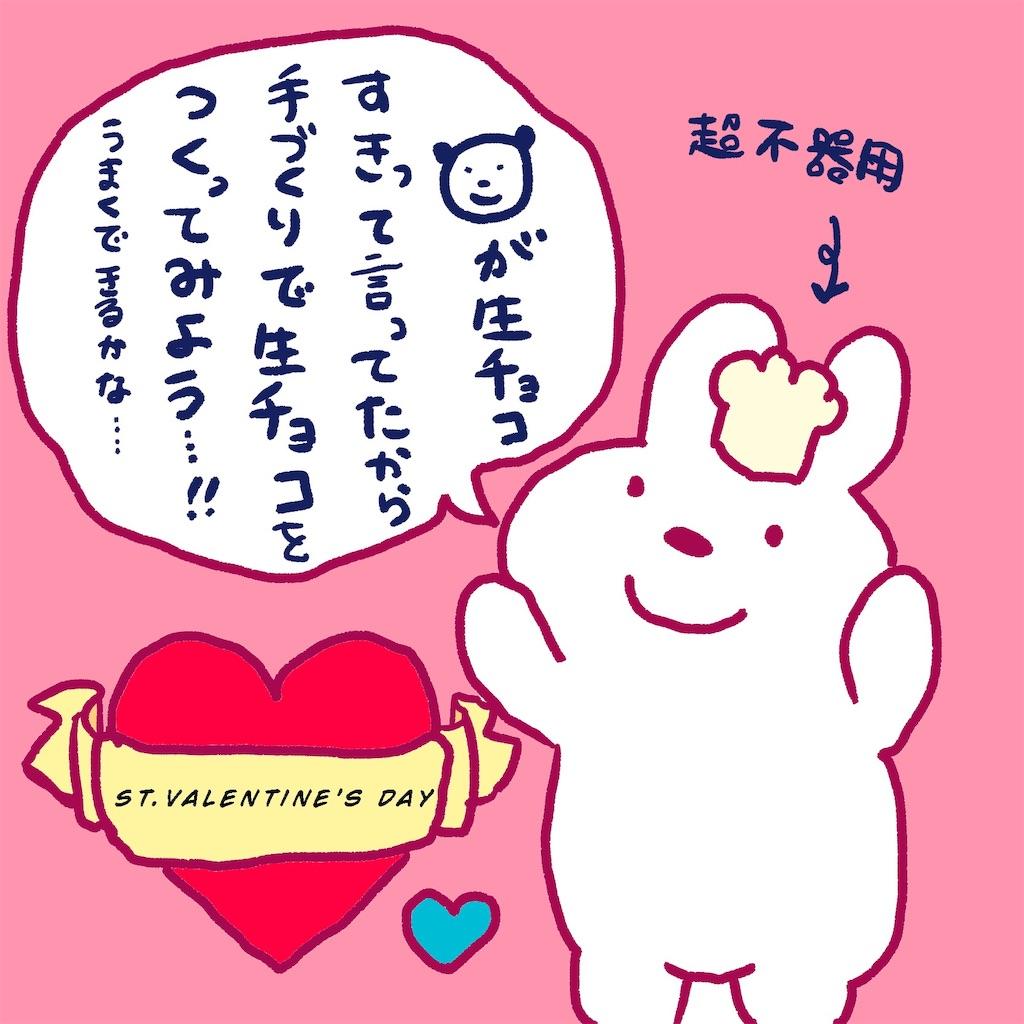 f:id:colo_shaku:20190217210610j:image