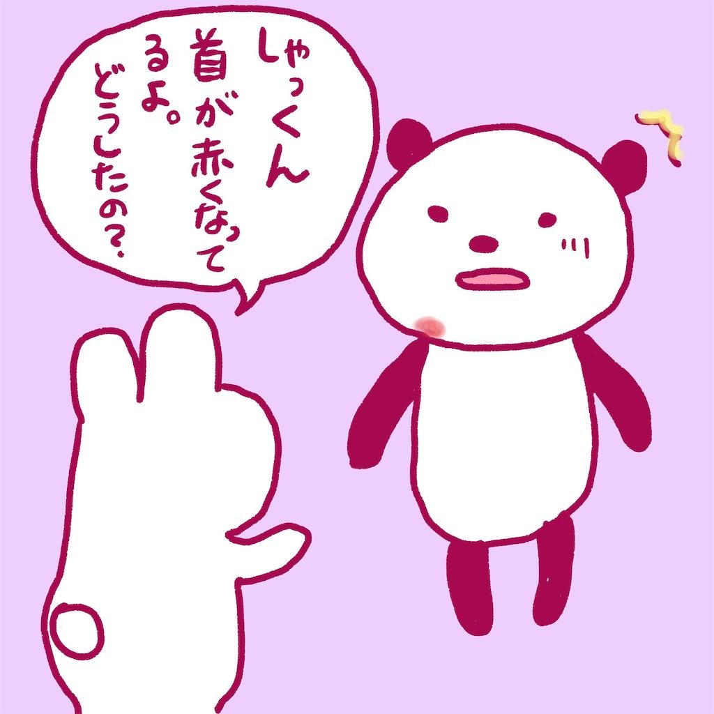 f:id:colo_shaku:20190217213624j:image