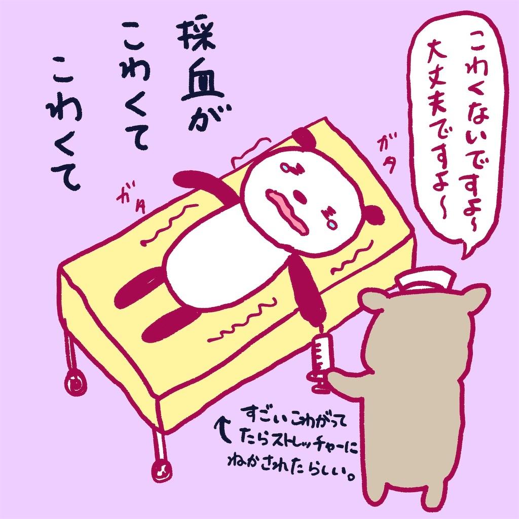 f:id:colo_shaku:20190217213633j:image