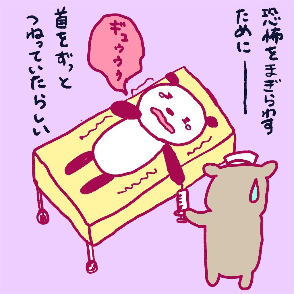 f:id:colo_shaku:20190217213637j:image