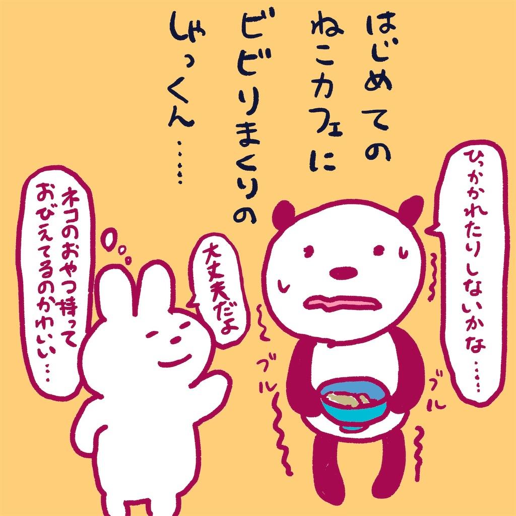 f:id:colo_shaku:20190218155643j:image