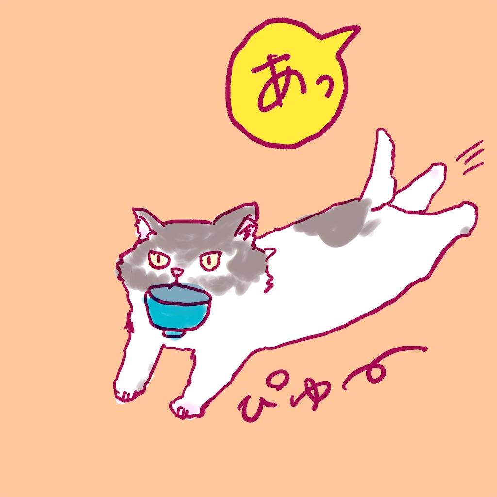 f:id:colo_shaku:20190218155659j:image