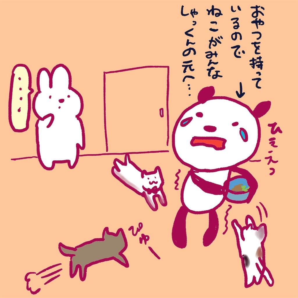 f:id:colo_shaku:20190218155703j:image