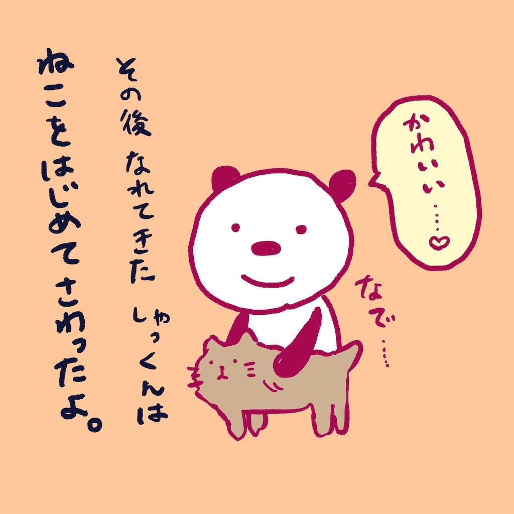 f:id:colo_shaku:20190218155711j:image
