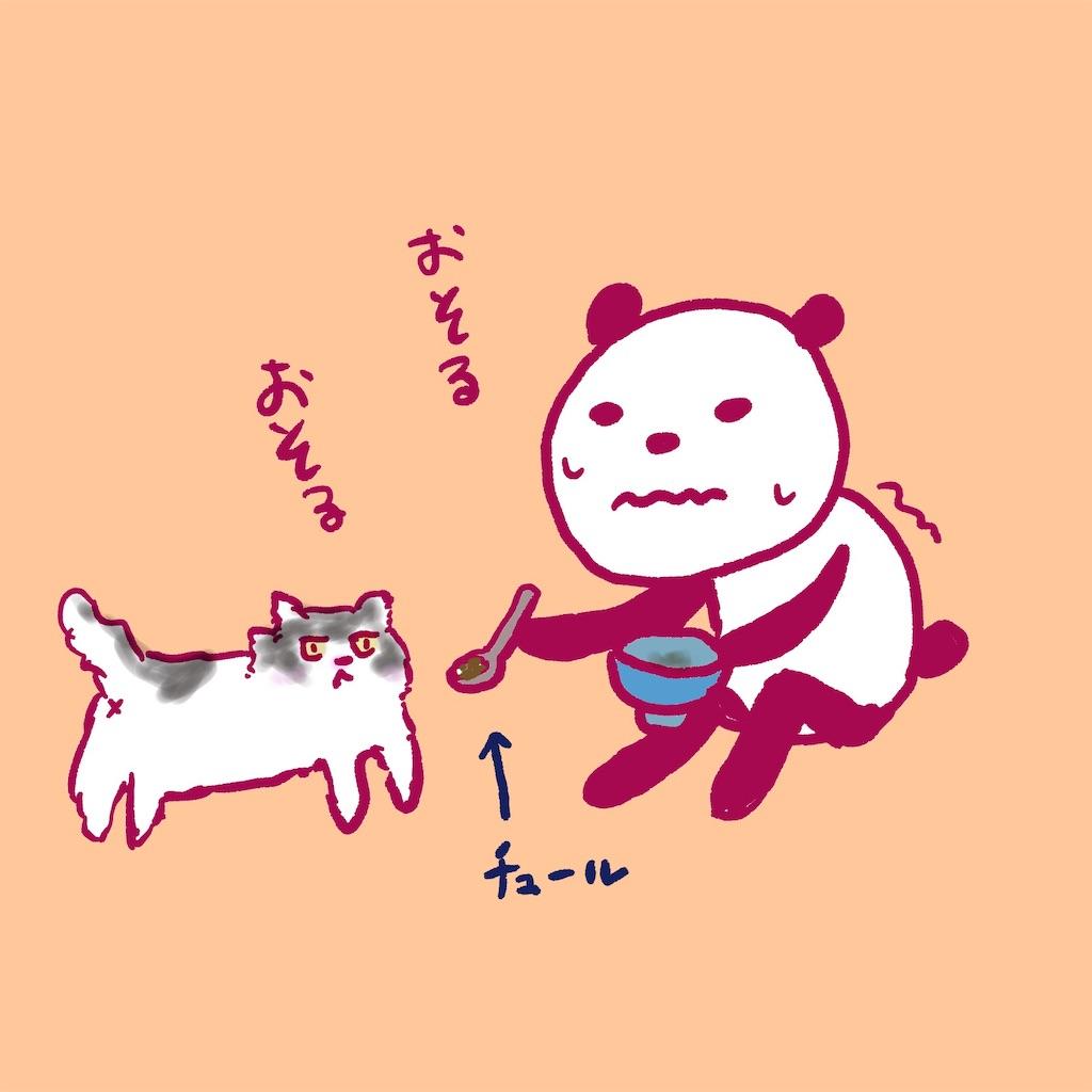 f:id:colo_shaku:20190218155718j:image