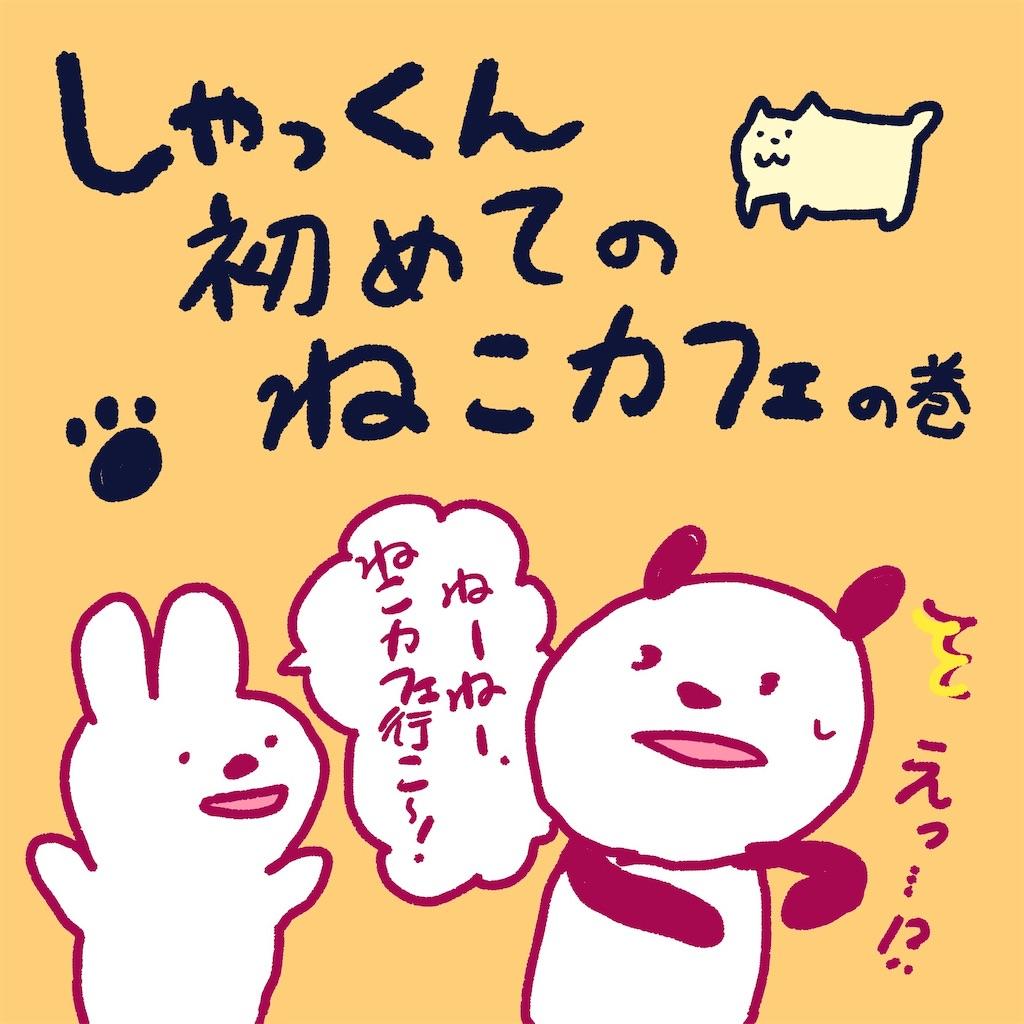 f:id:colo_shaku:20190218160133j:image