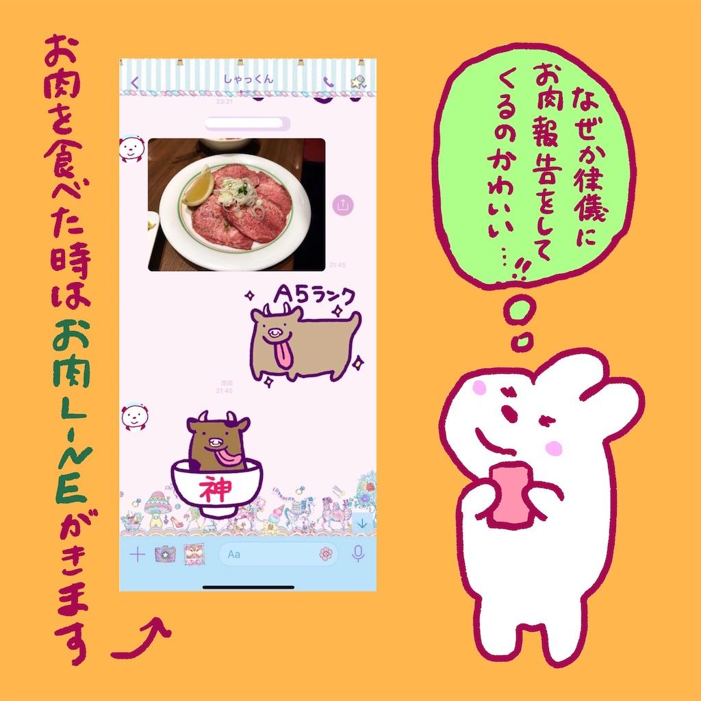 f:id:colo_shaku:20190220010033j:image