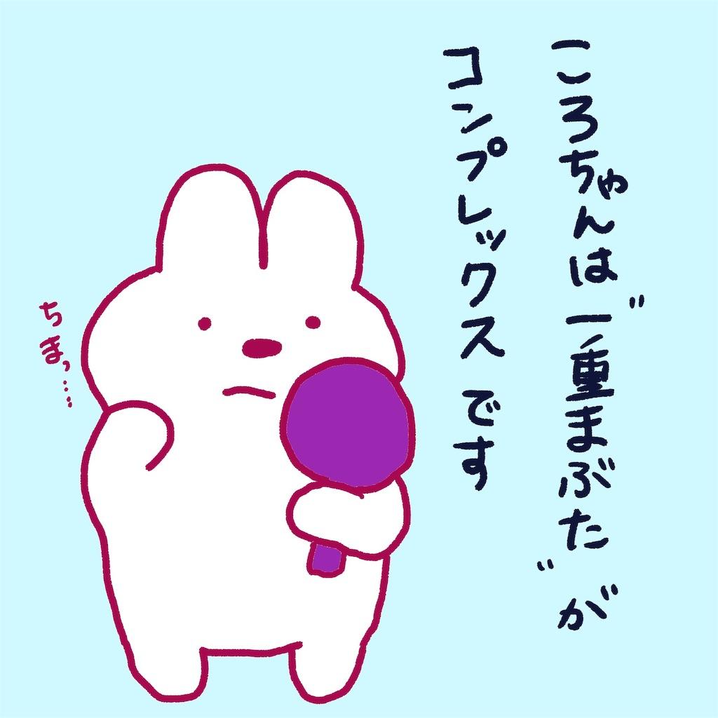 f:id:colo_shaku:20190220182318j:image