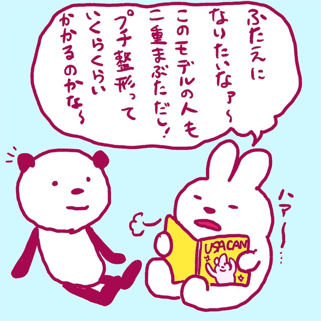 f:id:colo_shaku:20190220182323j:image