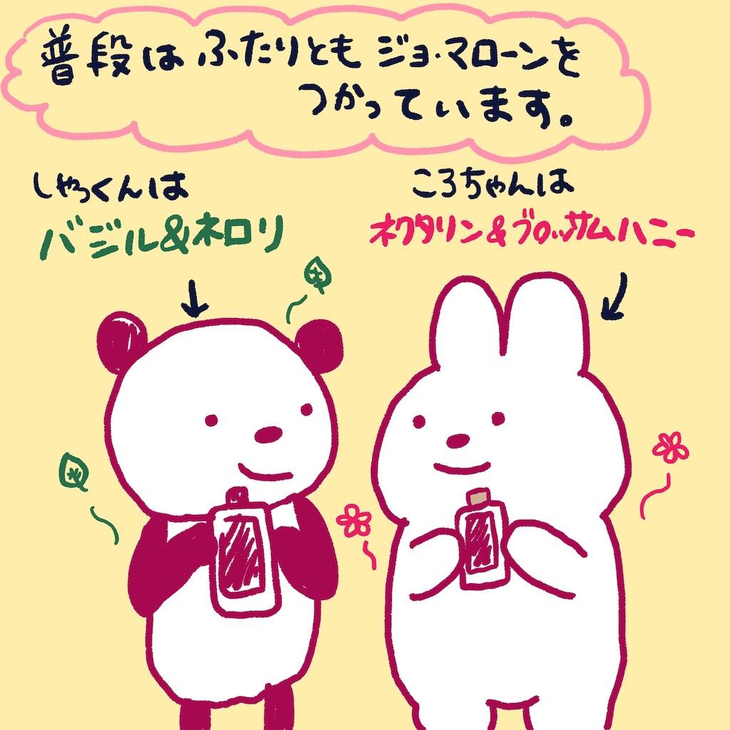 f:id:colo_shaku:20190220210049j:image