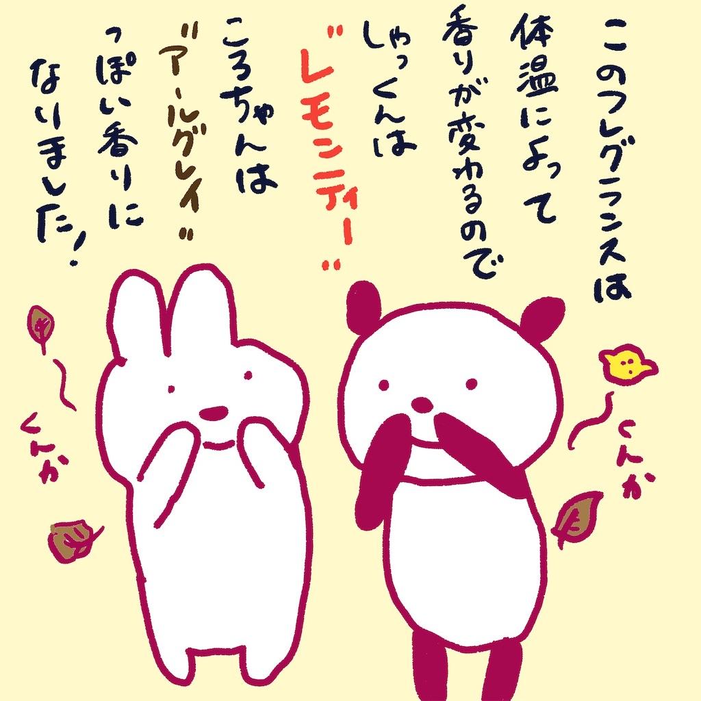 f:id:colo_shaku:20190220210159j:image