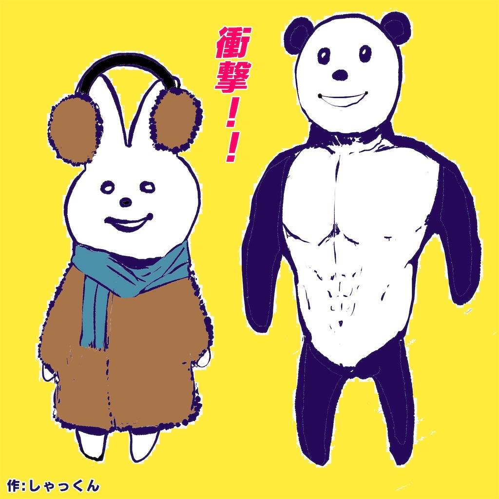 f:id:colo_shaku:20190225150552j:image