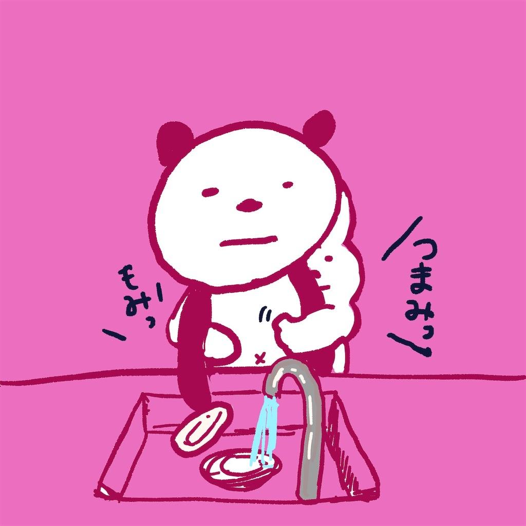 f:id:colo_shaku:20190227123828j:image