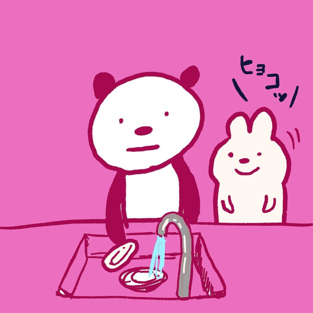 f:id:colo_shaku:20190227123836j:image
