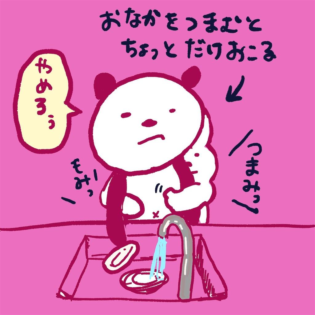 f:id:colo_shaku:20190227123843j:image