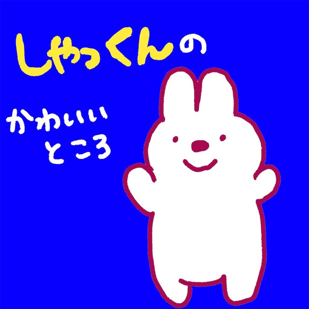 f:id:colo_shaku:20190227220023j:image