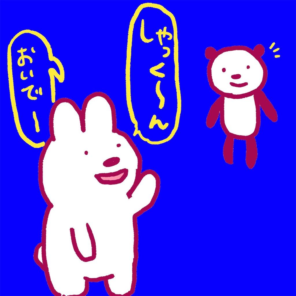 f:id:colo_shaku:20190227235658j:image