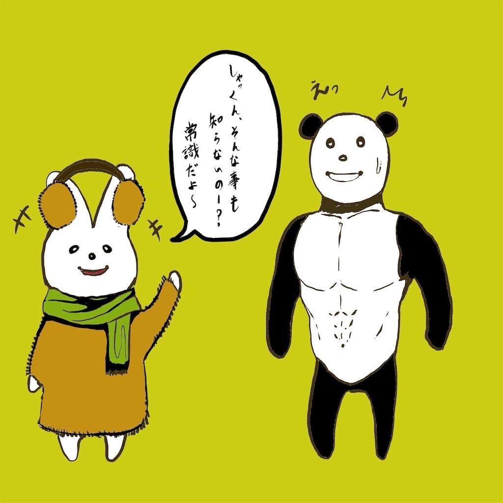 f:id:colo_shaku:20190301143418j:image