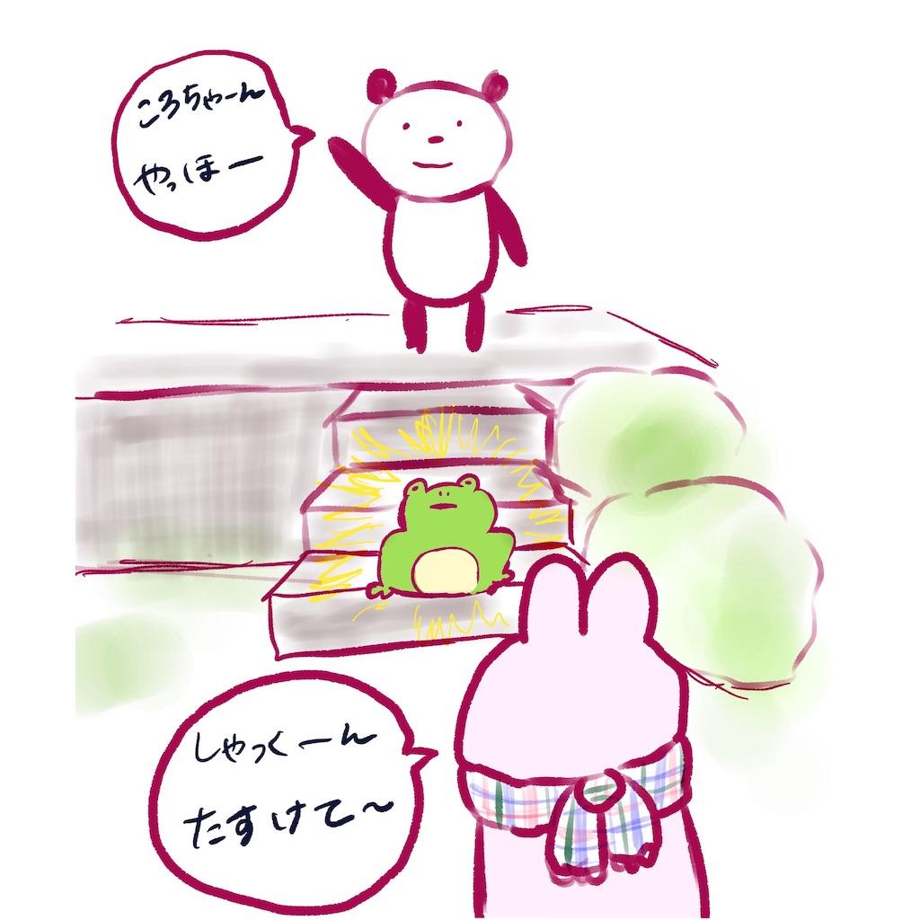 f:id:colo_shaku:20190304205825j:image