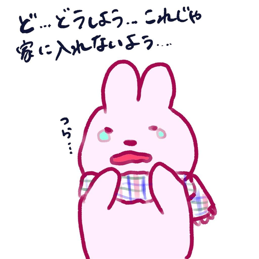 f:id:colo_shaku:20190304205831j:image