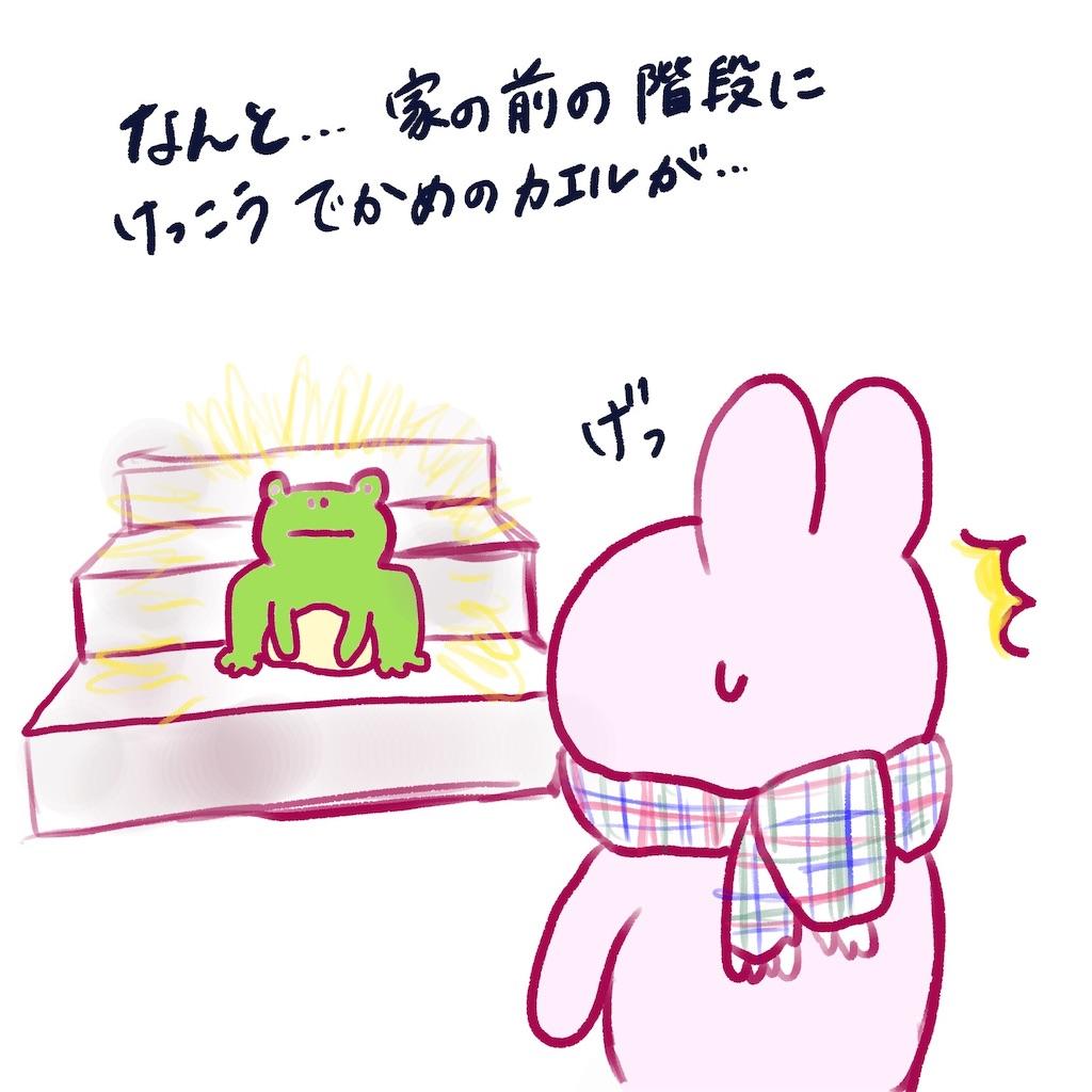 f:id:colo_shaku:20190304205846j:image