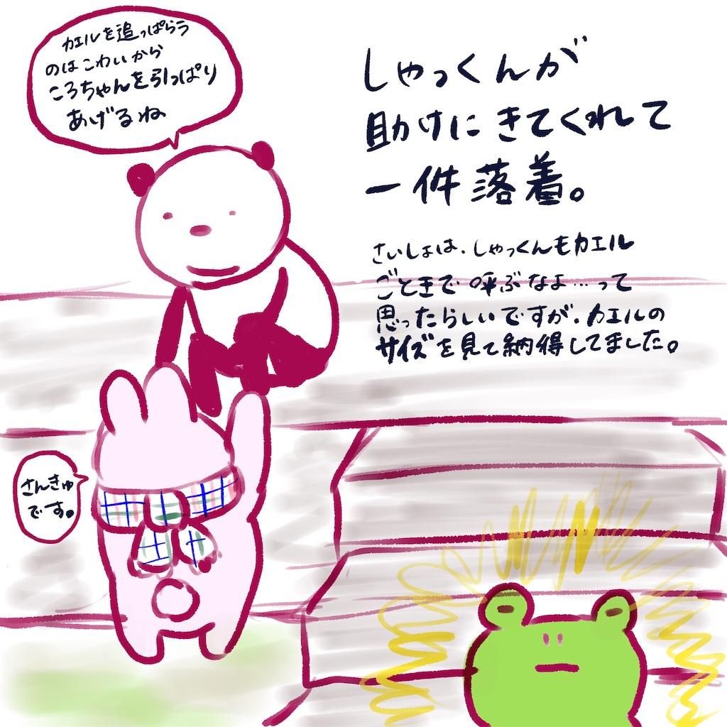 f:id:colo_shaku:20190304205853j:image