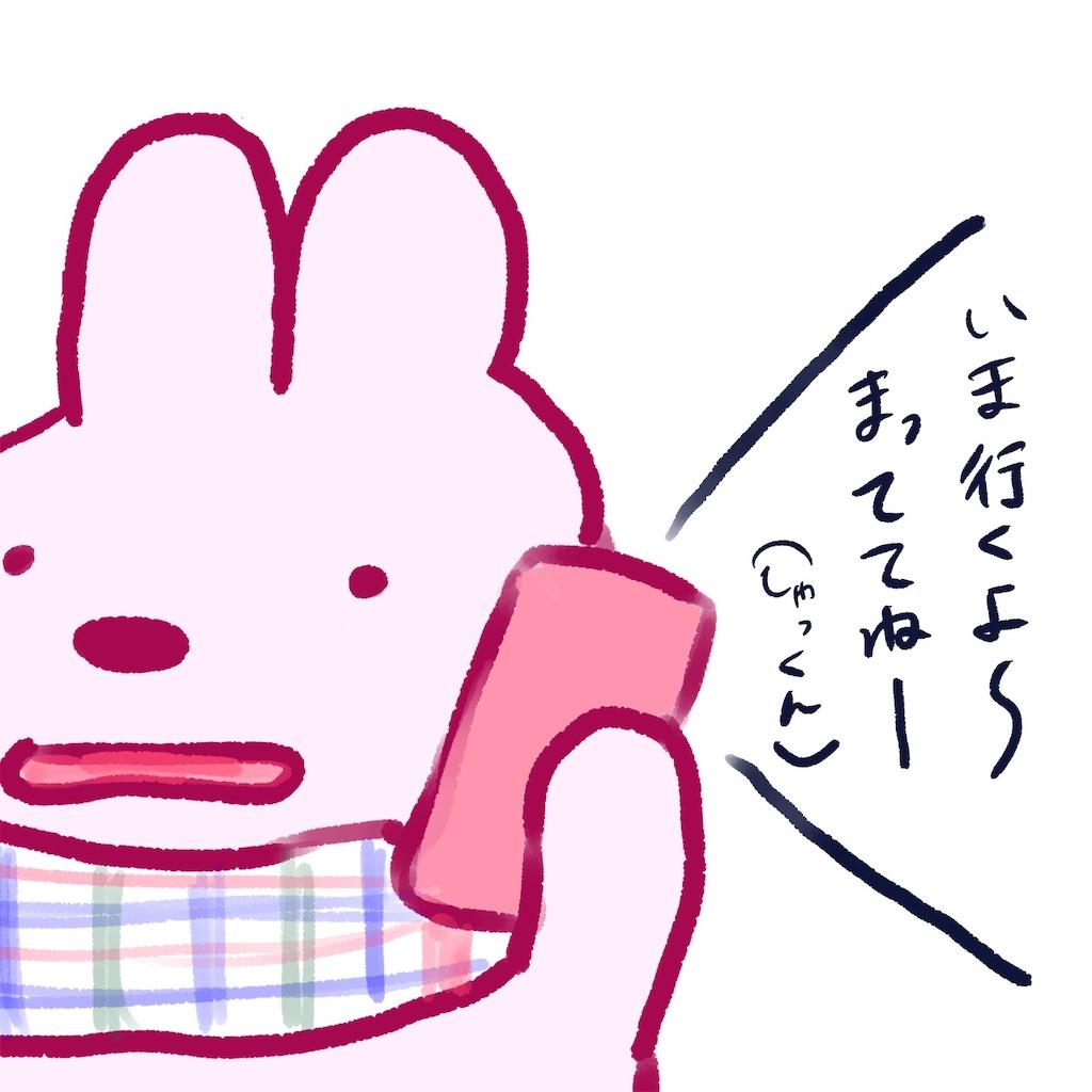 f:id:colo_shaku:20190304205858j:image