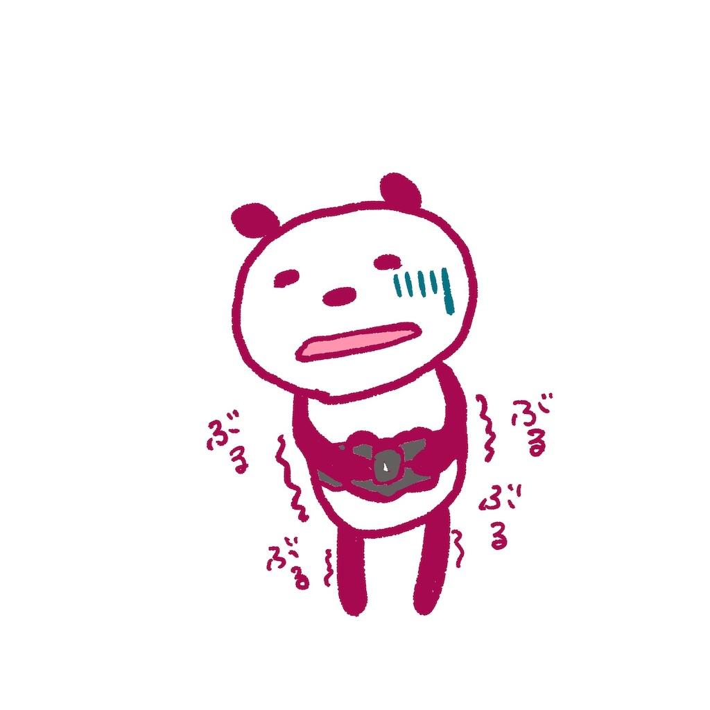 f:id:colo_shaku:20190308093757j:image