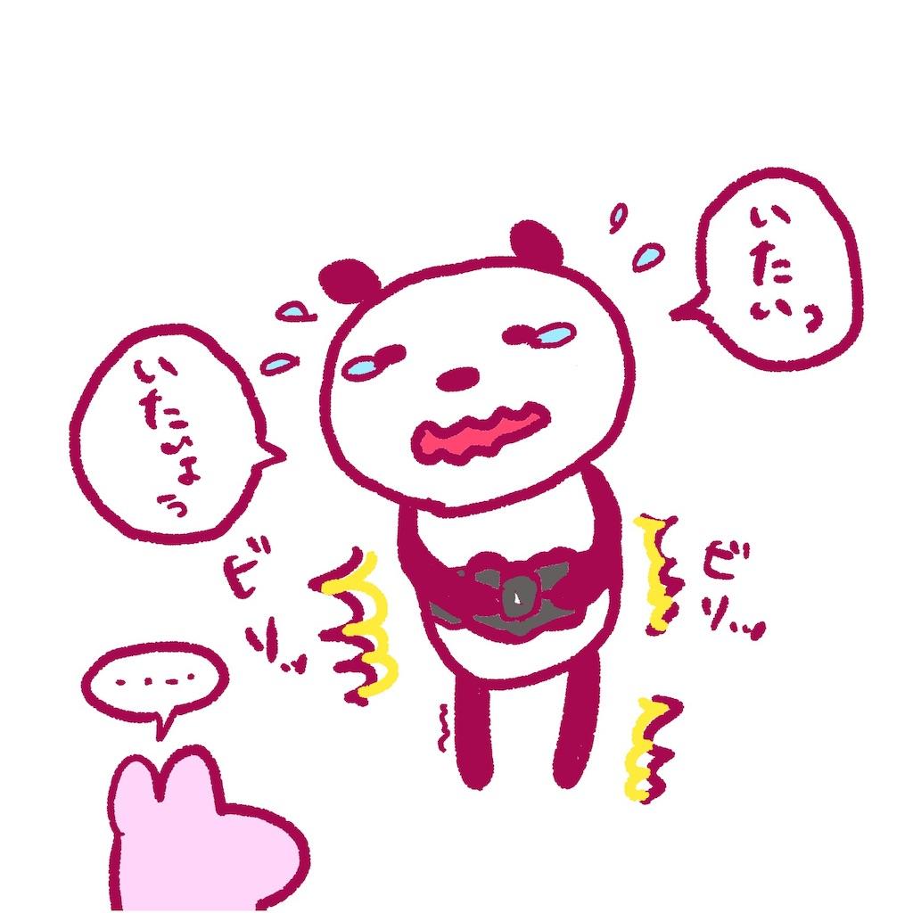 f:id:colo_shaku:20190308093801j:image
