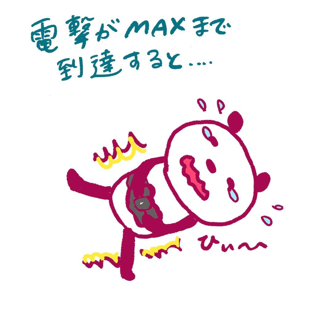 f:id:colo_shaku:20190308093816j:image