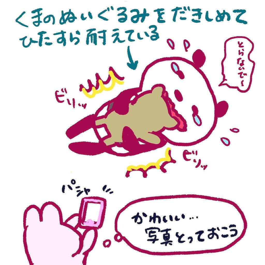 f:id:colo_shaku:20190308093821j:image