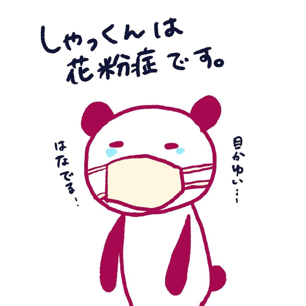 f:id:colo_shaku:20190308231446j:image