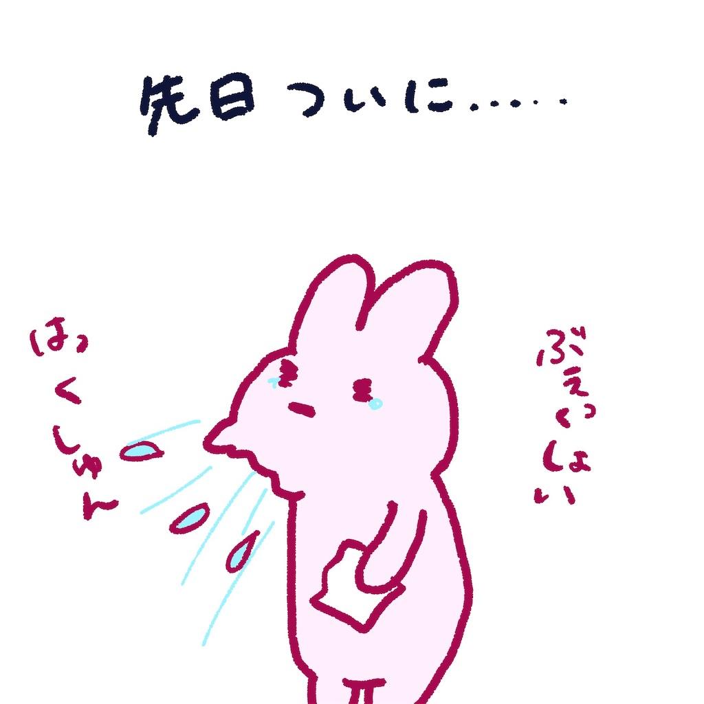 f:id:colo_shaku:20190308234645j:image