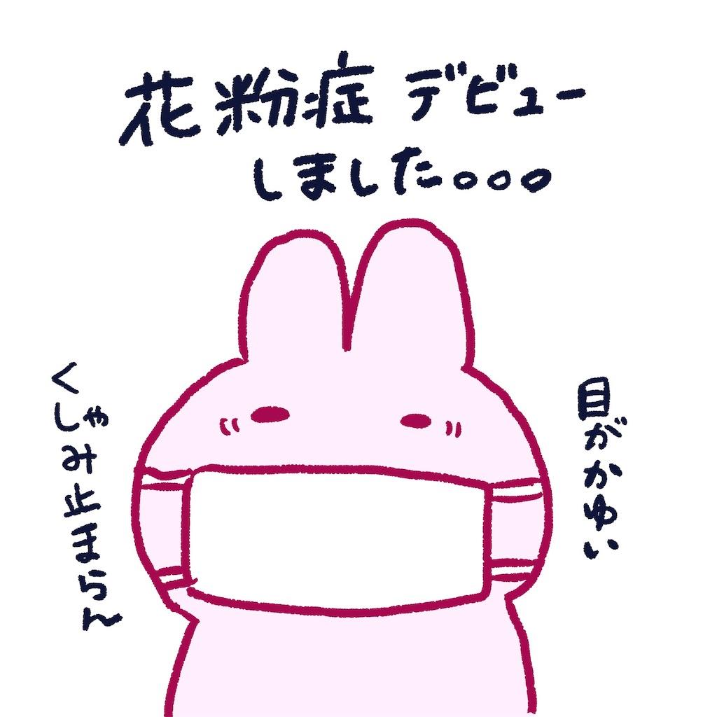 f:id:colo_shaku:20190308234649j:image