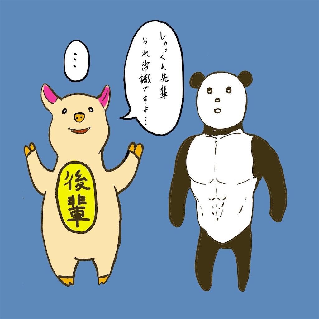 f:id:colo_shaku:20190310091335j:image