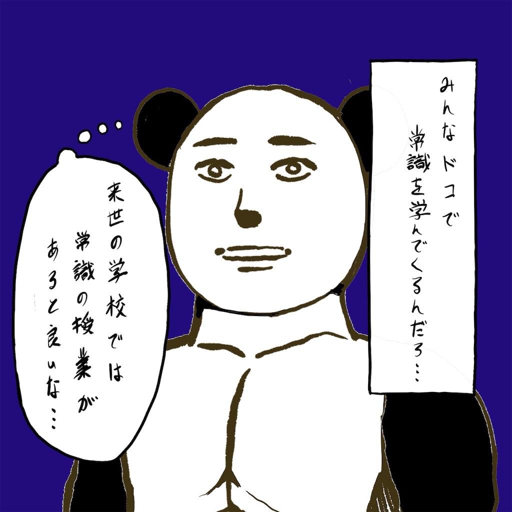 f:id:colo_shaku:20190310091340j:image