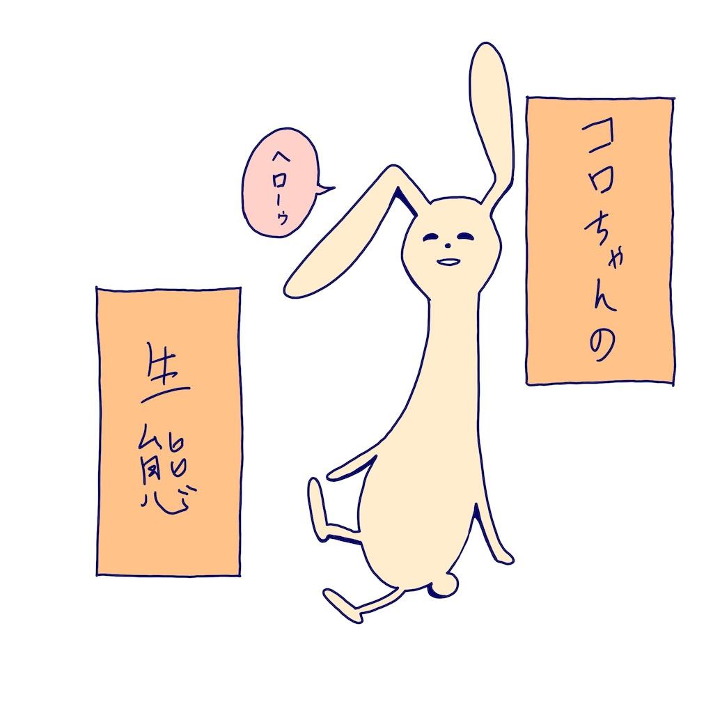 f:id:colo_shaku:20190313091023j:image