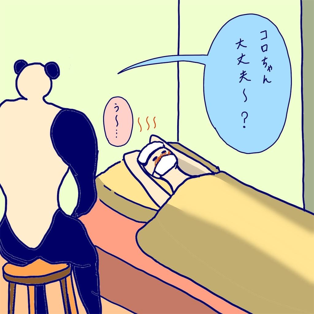 f:id:colo_shaku:20190313091030j:image