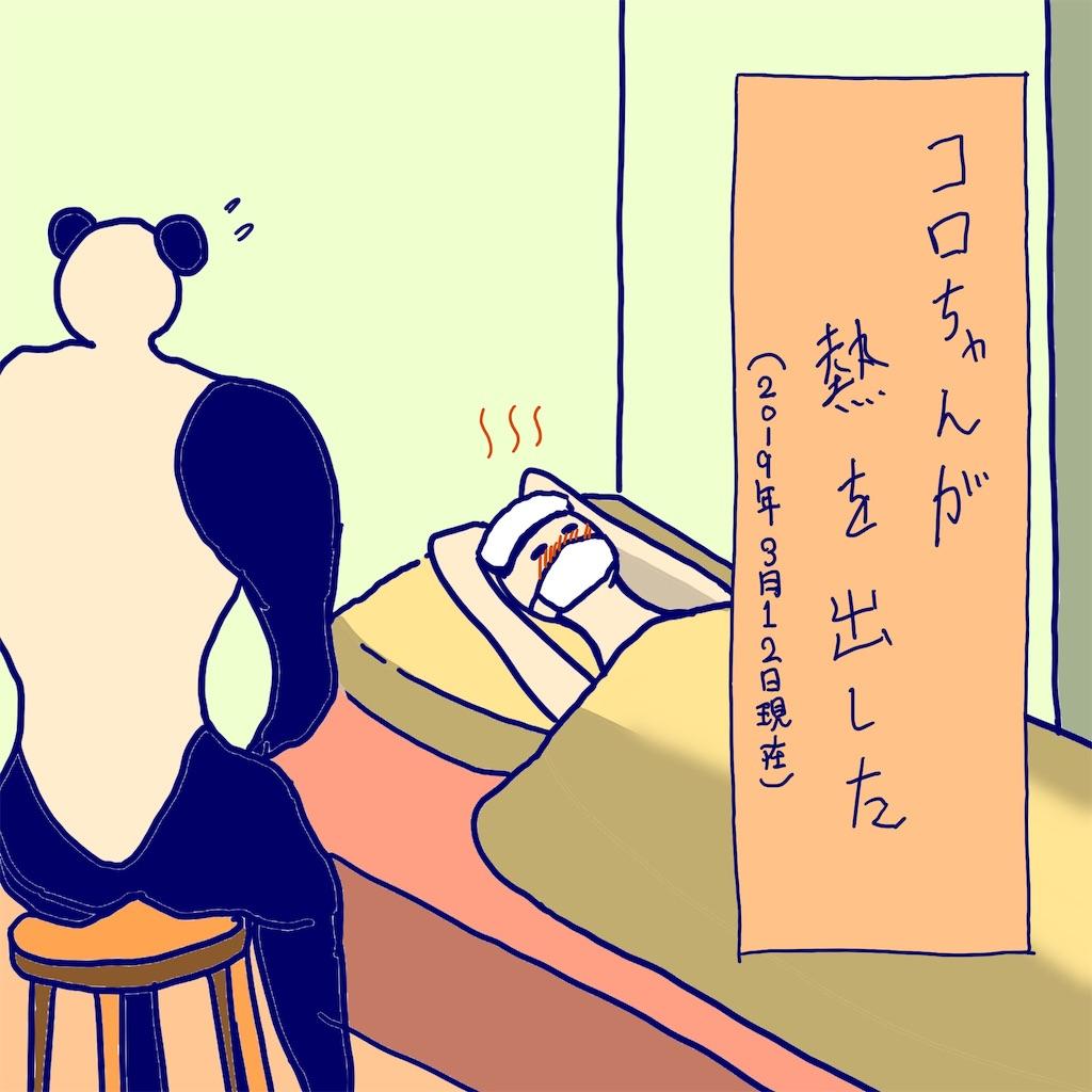 f:id:colo_shaku:20190313091045j:image