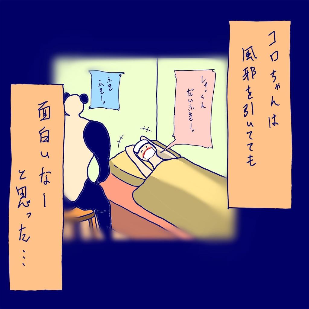 f:id:colo_shaku:20190313091102j:image