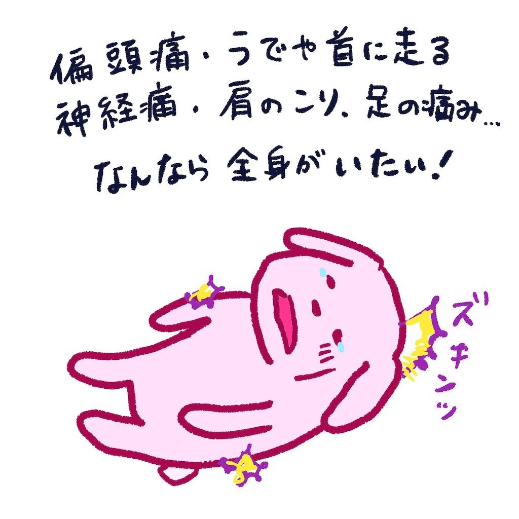 f:id:colo_shaku:20190318180010j:image