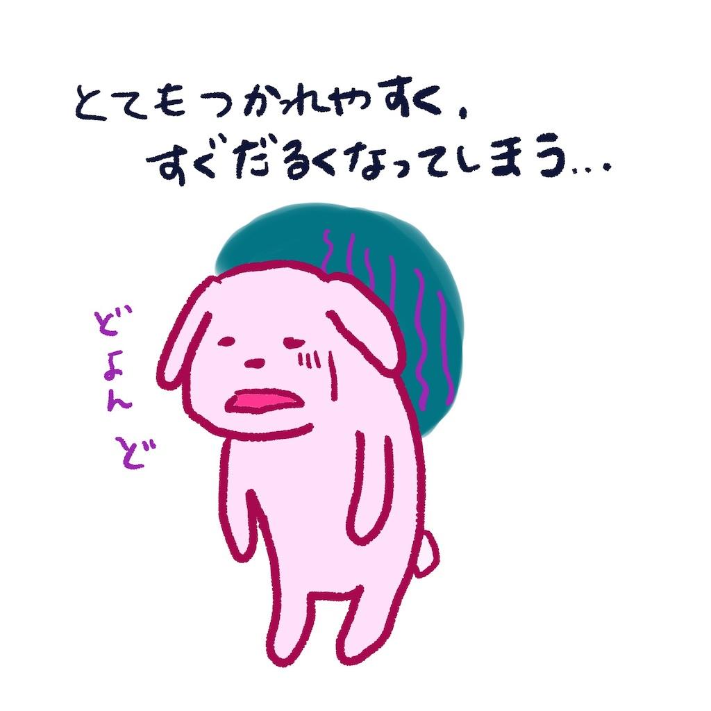 f:id:colo_shaku:20190318180021j:image