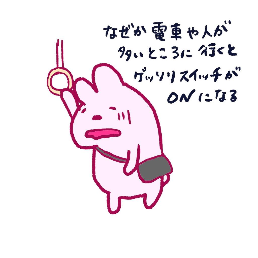 f:id:colo_shaku:20190319072019j:image