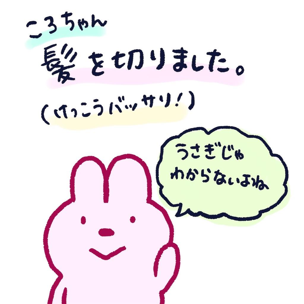 f:id:colo_shaku:20190330000557j:image