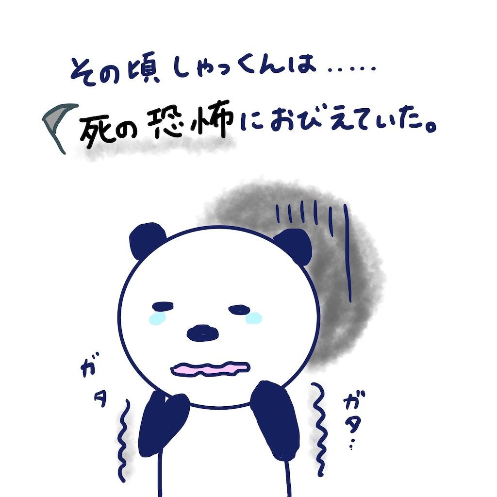 f:id:colo_shaku:20190407213729j:image