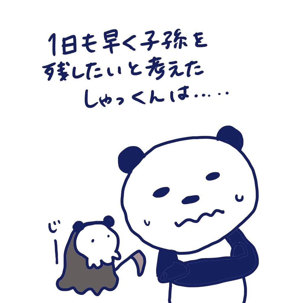 f:id:colo_shaku:20190408234204j:image